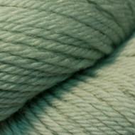 Cascade Sage 220 Solid Yarn (4 - Medium)
