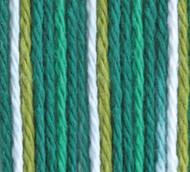 Bernat June Bug Ombre Handicrafter Cotton Yarn - Big Ball (4 - Medium)