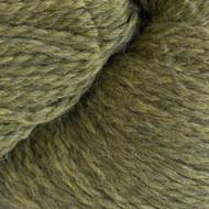 Cascade Turtle Eco + Yarn (5 - Bulky)