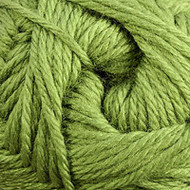 Cascade Cactus Pacific Yarn (4 - Medium)