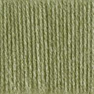 Bernat Fern Super Value Yarn (4 - Medium), Free Shipping at Yarn Canada