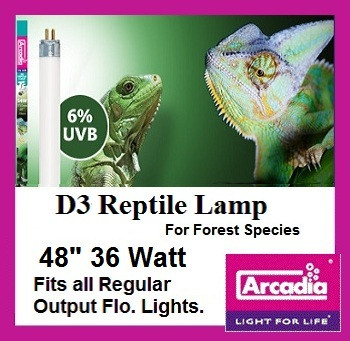 Reptile | Lamp | 48 | Inch | D3 | T8
