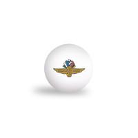 Indianapolis Motor Speedway 6pk Ping Pong Balls