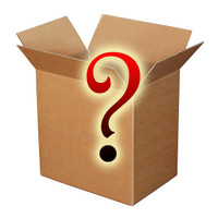 Adult Unisex Large Mystery Box