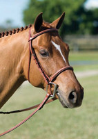 Rodrigo Fancy Stitched Padded Bridle