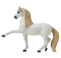 Safari Winner's Circle Andalusian Stallion