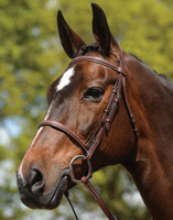 Kincade Fancy Stitched Raised Bridle, Pony & Cob