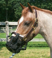 Best Friend Clip-On Grazing Muzzle