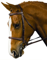 Collegiate Raised Padded Fancy Bridle, Cob, Brown