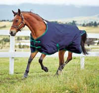 "Weatherbeeta Genero1200D Medium Turnout, Navy/Hunter, 60"" Only"