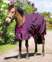 "Amigo Pony Hero 6 Medium Turnout, Berry/Fuschia, 45"" - 69"""