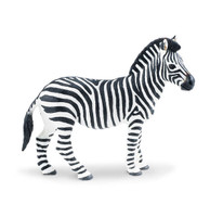 Wild Safari Plains Zebra