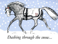 'Dashing Through the Snow' Horse Holiday Cards - Box of 8