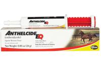 Anthelcide EQ Paste Horse Dewormer, 24 gm