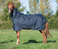 "Amigo Pony Bravo 12 Plus Medium Turnout, 45"" - 69"""