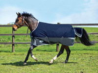 "Weatherbeeta Freestyle 1200D Lite Turnout Sheet, Sizes 60"" - 69"""
