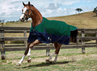 "Weatherbeeta Original 1200D Medium Turnout, Hunter/Navy, 51"" & 66"" Only"