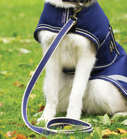 Horseware Amigo Dog Lead, Atlantic Blue/Ivory