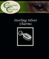 Sterling Silver Charm - Horse Brush