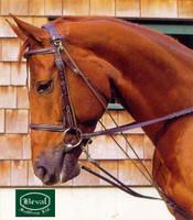 Beval Princeton Pony De Gouge