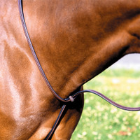 Beval Gladstone Raised Standing Martingale, Pony