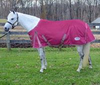 "Centaur 1200D Medium Turnout Blanket, Raspberry Pink, 54"" - 66"""