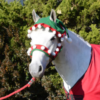 Holiday Horse Wear, Elf Halter Covers