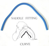 Saddle Fitting Curve
