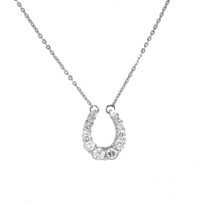 Sterling Silver and Swarovski Crystals Graduated Horseshoe Pendant & chain