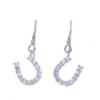 Horseshoe Drop Earrings (Large) (ER13)
