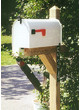 PT Post with #2 Mailbox Installed 25 mile radius