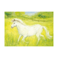 White Horse by Marjan van Zeyl.  Postcard, printed in the Netherlands.