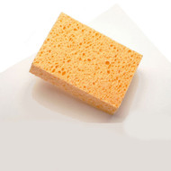 cellulose sponge for watercolour painting