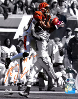 AJ Green Autographed 8x10 Photo Cincinnati Bengals - Beckett COA