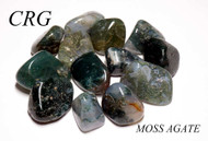 Green Moss Agate Tumbled Gemstones 1LB