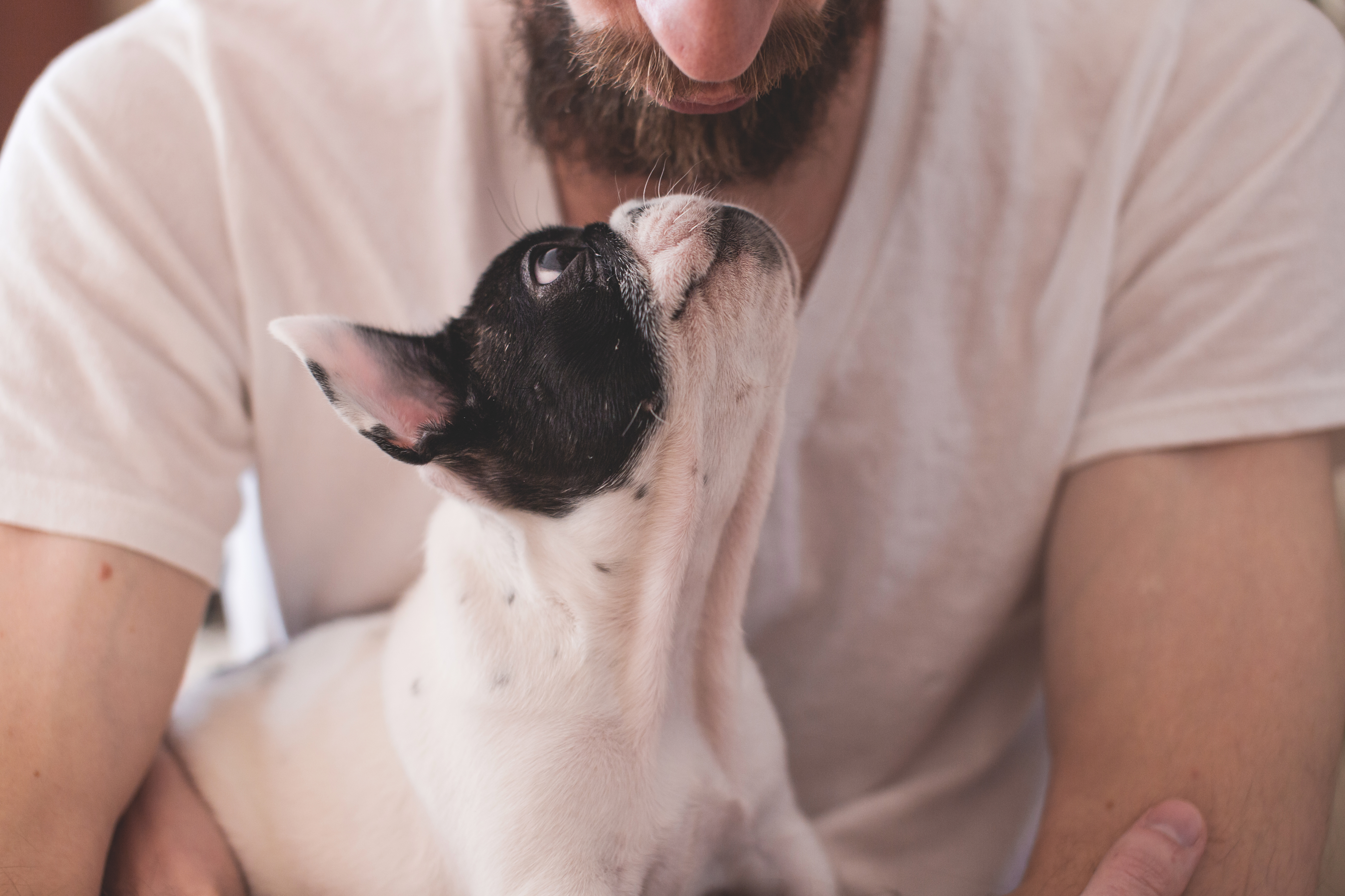 man-with-a-puppy.jpg
