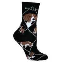 Wheel House Beagle Socks