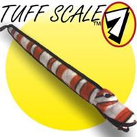 VIP Tuffy Eel