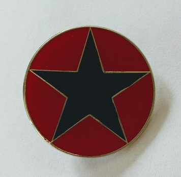Black star enamel badge