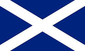 Giant Scottish saltire 8 x 5 flag