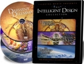 Illustra Media Intelligent Design Collection