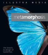 Metamorphosis: The Beauty and Design of Butterflies Blu-ray