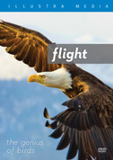 Flight: The Genius of Birds DVD