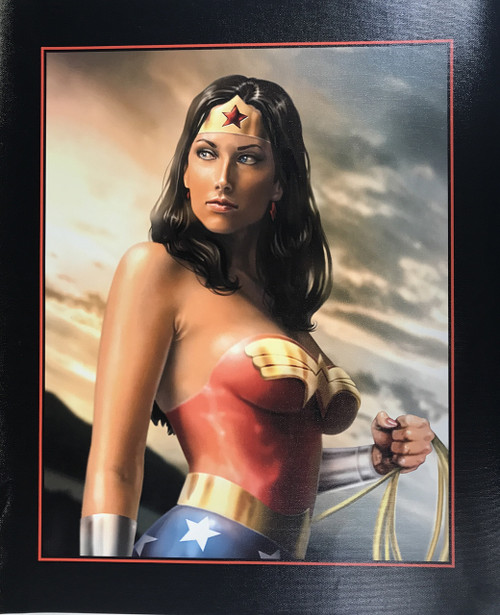 WONDER WOMAN CANVAS PRINT 18X22 17110