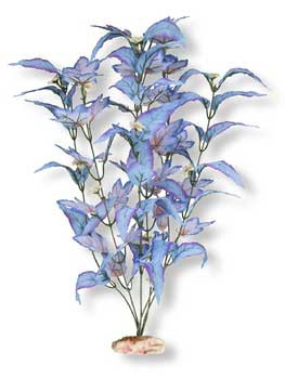 Blue Ribbon Colorburst Florals Flowering Broad Leaf Cluster 9-10in {bin-B}
