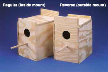 Ware Manufacturing Nest Box Lovebird Reverse-86293 {bin-1}