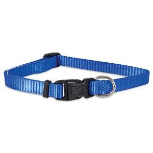"Petmate 1-1/2x20-30"" Basic Collar Blue Adjustable {bin-1}"