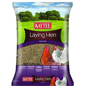Kay Food Laying Hen Feed 10 lb