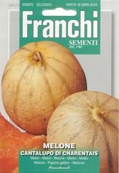 MELON (Melone) cantalupo di Charentais