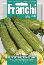 ZUCCHINI (Zucchino) alberello di Sarzana